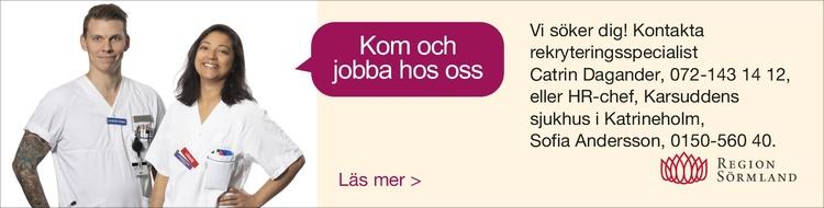 Region Sörmland banner vt21